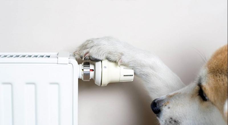 Автономное отопление радиаторы